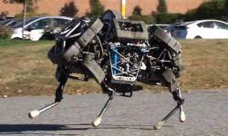 Четырехногий робот Boston Dynamics